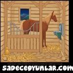 Ağırdan At kaçırma