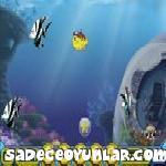 Büyük Balıklardan Kaç
