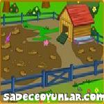 Dora Çiftliği