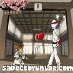 Karateci maymun