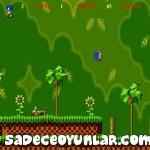 Sonic Alt�n Halkalar