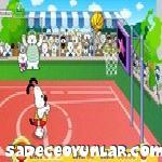 Süs Köpeği Basketbolu